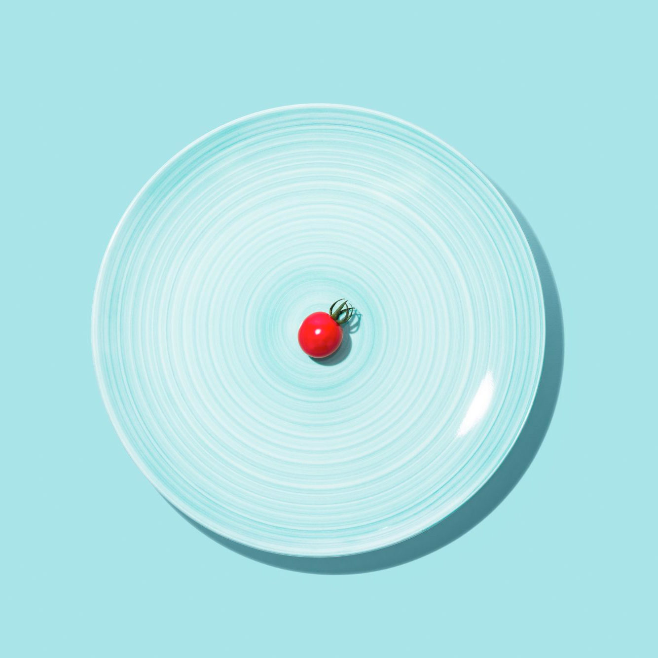 plate with one tiny tomato on it